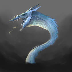 Mysterious blue dragon by TigeraRainbowra