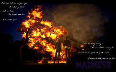 Madness by ServerNotFound