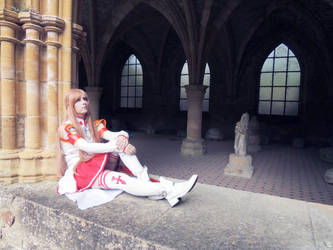 Sword Art Online Cosplay by NeoClanCosplayers