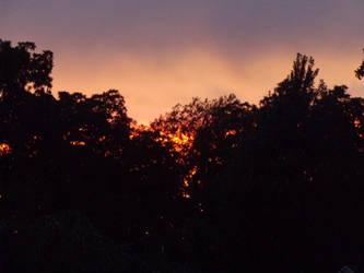 Fire in th'Sky by Sonic1234567891