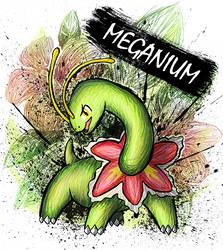 Meganium by sudro