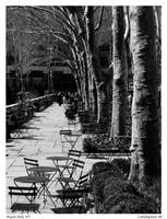 Bryant Park 1 by camithepirate