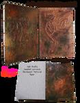 Handmade Coptic Bound Dragon Book by snazzie-designz
