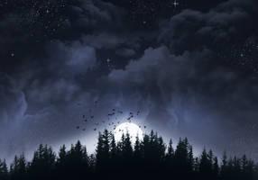Night by Varrulin