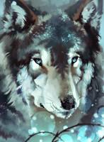 Wolf by Varrulin