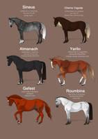 Orlov foals by Templado