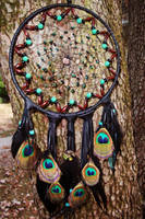 Dream Catcher 'Cant take my eyes off of you' by xsaraphanelia