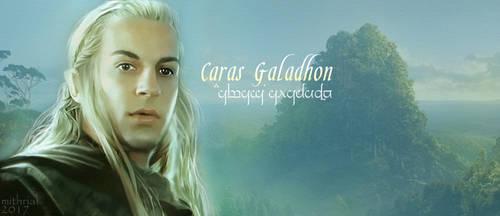 Haldir -  Caras Galadhon by mithrialxx