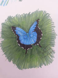 Ulysses Butterfly by inveteratecat