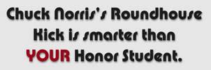 Chuck Norris Bumper Sticker by custom3dgraphics