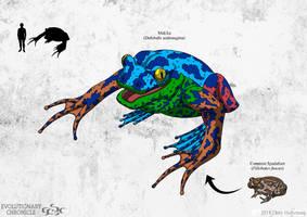 EC - Makika (Blue Morph) by Poharex
