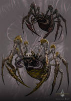 giant spider - gyromancer by kunkka