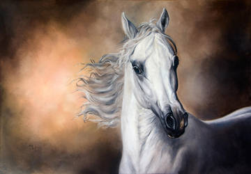 Arabian Horse by IrenaDem