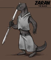 Zaran the  Black by Kobb