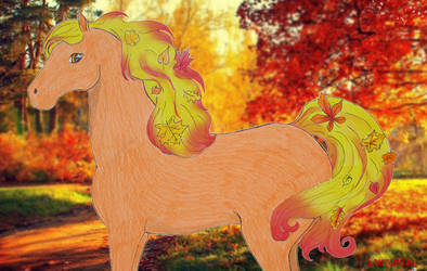 Autumn by Laurindie