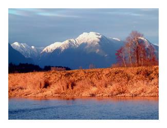 Winter Wanderland by tinia