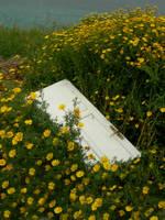 door in a flower bush stock by LylicaGalatea
