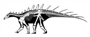 The First Stegosaur by Qilong