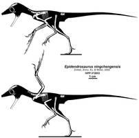 The OTHER Aye-aye Dinosaur by Qilong
