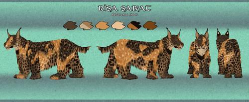 Azeroth Character Sheet Risa SabAt by raptorzs