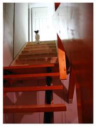 So many stairs by liinu