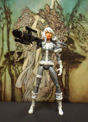 Silver Sable 2 Custom 3 by DieciDiPicche10