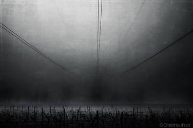 Fog by ChristineAmat