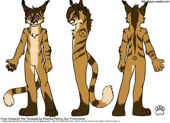 Fursuit Refsheet 'Styx' by Dragonfire16