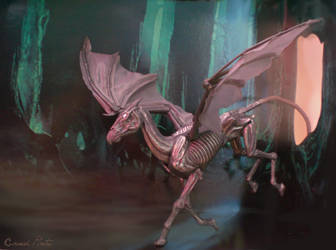 My Thestral by abosz007