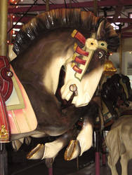 Horse 1 by tolcott