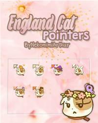 England Cat pointer ByNekomimiArthur by Nekomimiarthur