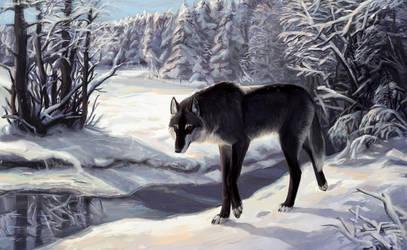 Winter Noon by Atenebris