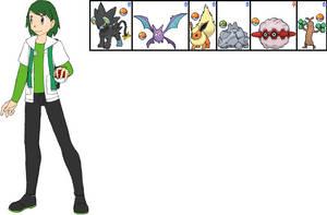Sorrel's Team in Pokemon Aura by ChipmunkRaccoonOz