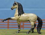 CM Safari Andalusian - 'Buen Intento' by TR-Ranch
