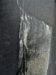 Ascettarium by jon-bibire