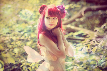fairy by 13-Melissa-Salvatore