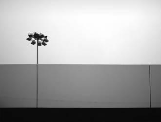 Urban flower by turst67