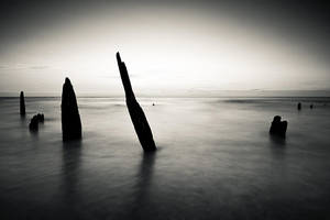 Sentinels of Calm by drkshp