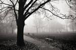 Between Breaths by drkshp