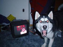 OMG! Smile Dog! by Hikari-Darks