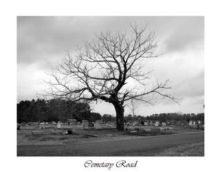 Cemetary Road by daydreamers