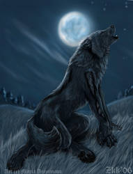 Weremoon by Yellow-eyes