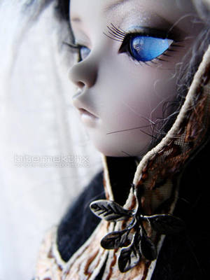 Stares of Silence by bitemekthx