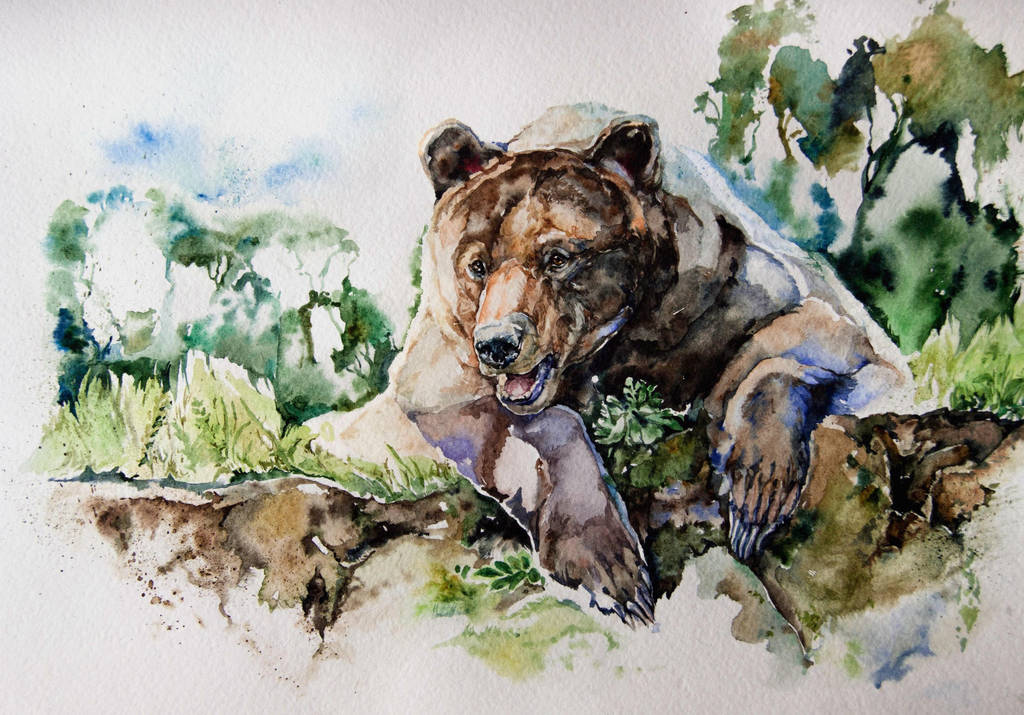 watercolor, bear by LomovtsevaOlga