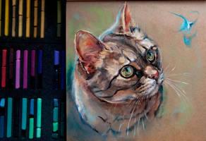 Cat, dry pastel by LomovtsevaOlga