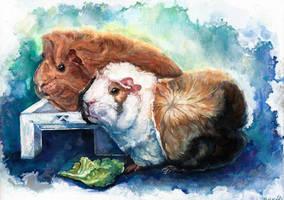 Guinea Pigs, gouache by LomovtsevaOlga