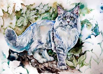 Mainecoon, warecolor by LomovtsevaOlga