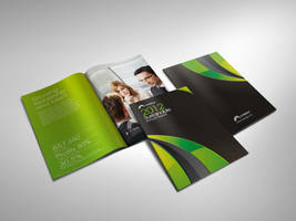 Sustainable annual report by Lemongraphic