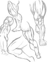 Leg practice by Jetichor