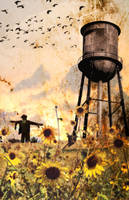 Sunflowers At Dusk by JasonCasteel